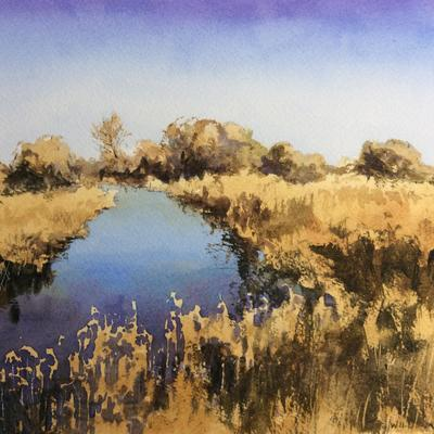 Stream on Otmoor.  William North