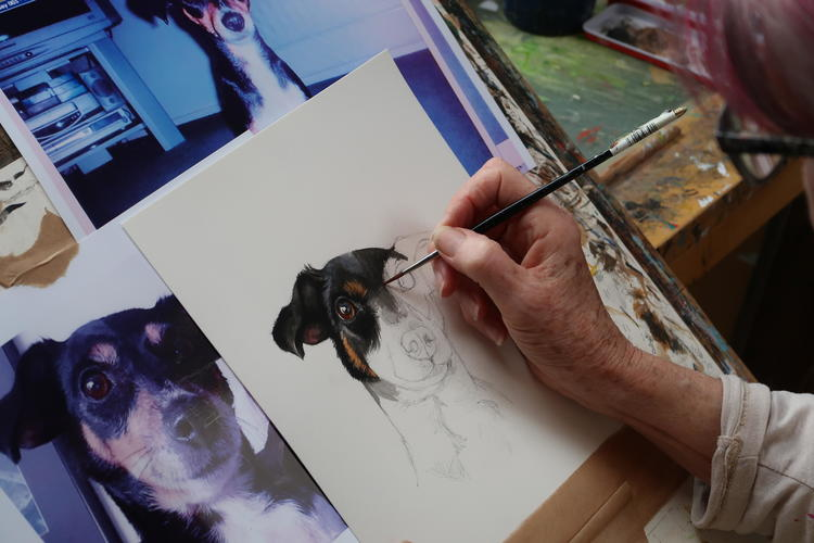 Nandi painting Sophie the Jack Russell.