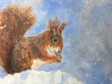 'Treasures in the Snow' by Janet Bird
